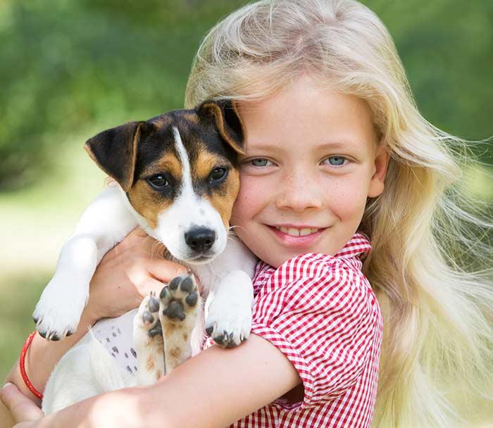 Puppy Veterinary Care Lake Worth FL