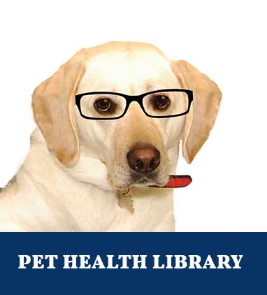 Pet Health Library