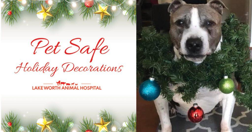 Pet Safe Holiday Decorating Tips